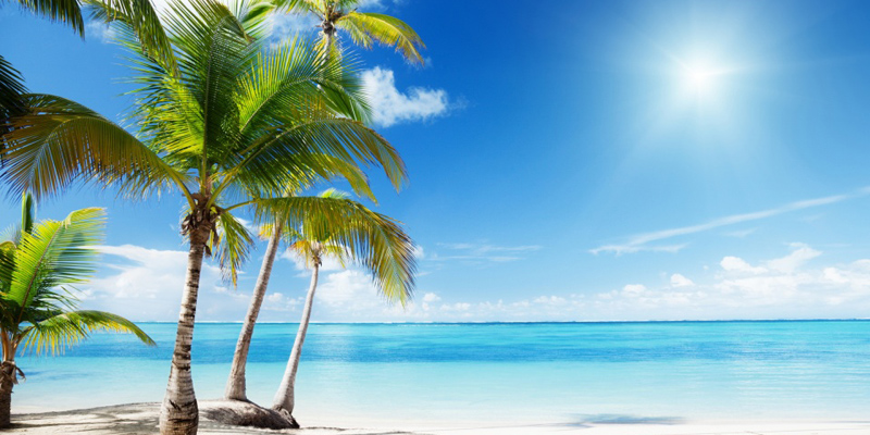 tropical_beach_paradise-wallpaper-960x600